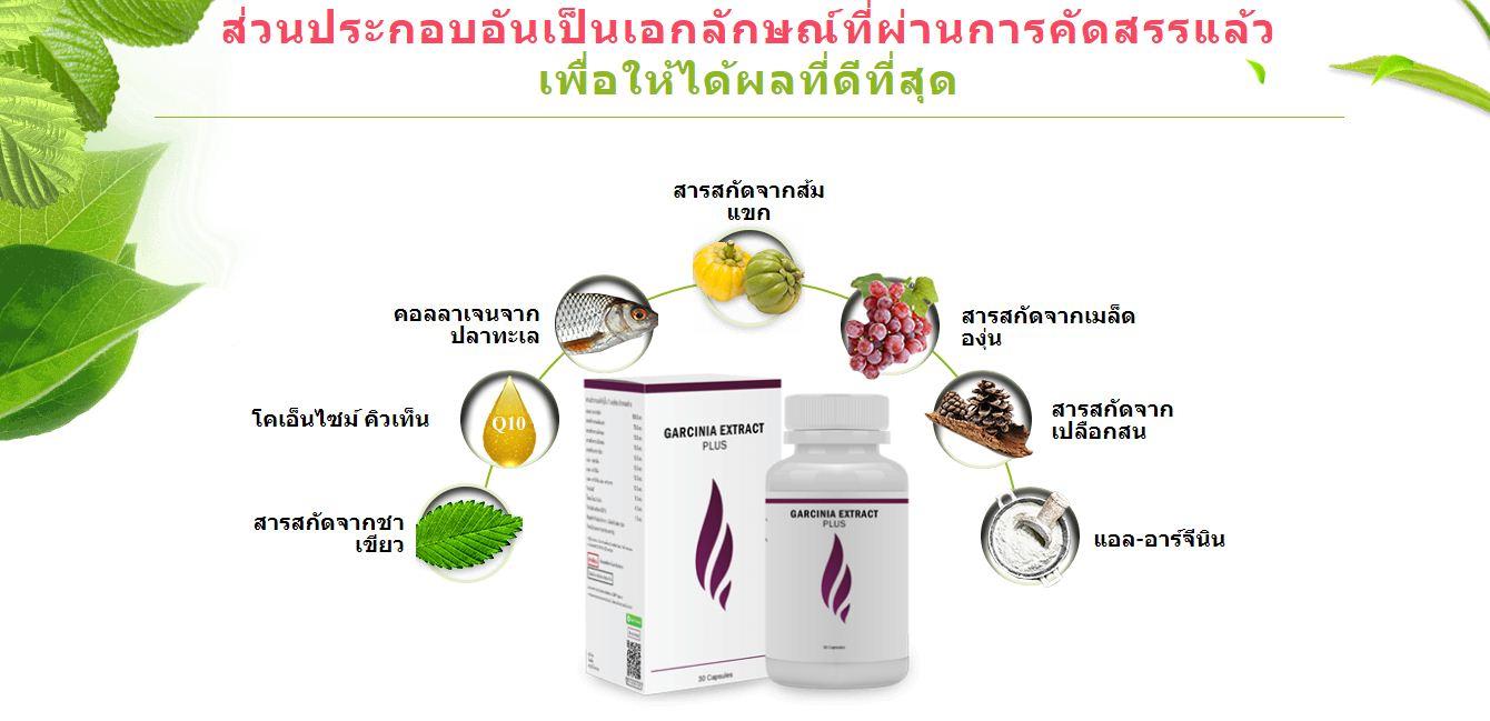 Garcinia Extract Plus