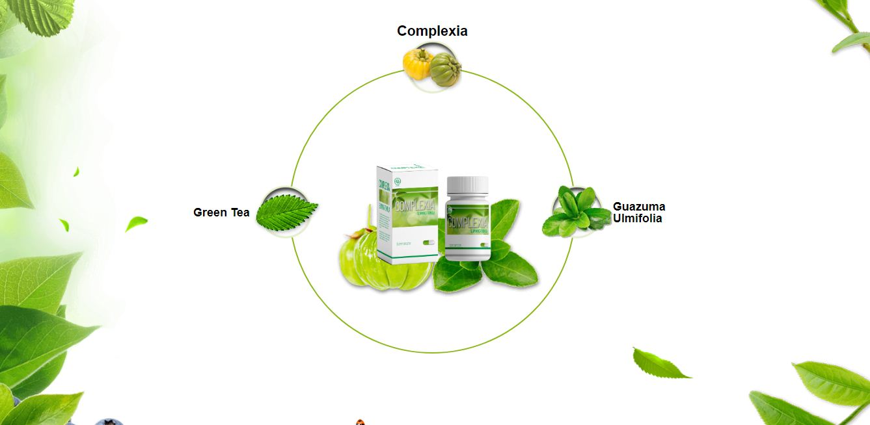 metabolismo glucogeno se explica